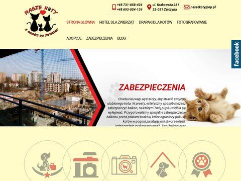 Nasze Koty - hotel dla zwierząt Kraków