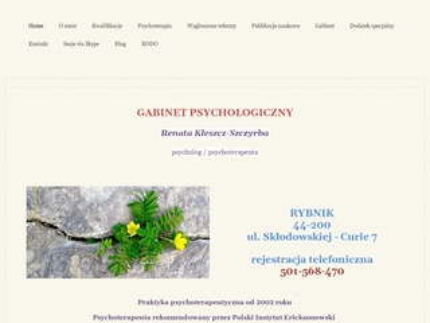 Psychoterapeuta w Rybniku