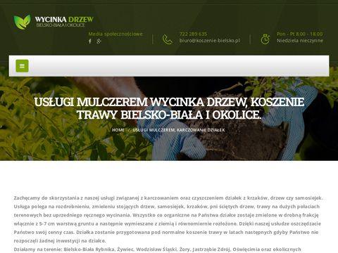 Profesjonalne usługi wycinki drzew
